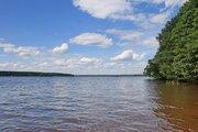 Участок 48 га, на первой линии р.Волга, с Сосновым лесом - Фото 1