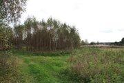 Продажа земельного участка 32 сот. в д. Токарево - Фото 5
