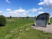 Участок в Тульской области - Фото 4