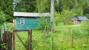Дачный домик на участке 6 соток в лесу рядом с д. Федосьино