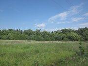 Живописный земельный участок на берегу реки Ока в д. Лужки - Фото 4