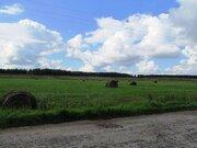 2,7 Га в д.Недюрево - 105 км Щёлковское шоссе - сельхозназначение - Фото 4