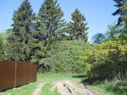 Лесной участок 10 соток в истринском районе - Фото 3