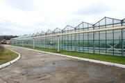 Продажа производственных помещений в Беларуси