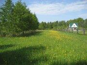 Земельный участок для лпх 50 соток в д. Кошелево - Фото 1