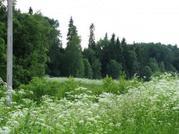 В Волоколамском районе 72 гектара - Фото 3