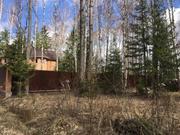 25 соток с лесными деревьями д.Ходаево Чеховский район - Фото 3