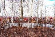 Новорязанское ш, 25 км от МКАД, Каменное Тяжино - Фото 3