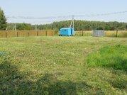 Продается земельный участок в СНТ Полесье д. Липитино Озерский район - Фото 5