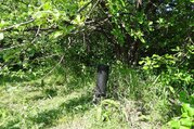 Участок в саду Ясный, Иглинский район, близ д.Субакаево - Фото 4