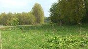 Продается большой участок земли вблизи водохранилища в Рузском р. - Фото 2