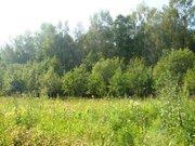 Продается участок 5 км от Чехова д. Волосово - Фото 5