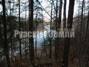 Участок на реке Озерна в окружении леса - Фото 4