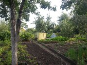 Сад девять соток в Копейске, СНТ Пластмасс-1 - Фото 1