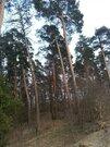 Земельный участок 13 соток в деревне Алексеевка-2 Щелковский район - Фото 5