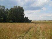Земельный участок 16 сельхозназначения в Ивановской области - Фото 1