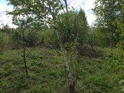 Земельный участок 12 соток в СНТ «русь» вблизи д. Бельское - Фото 4