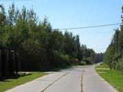 Красивый лесной участок 12 соток, Минское шоссе, Зелёная роща-1 - Фото 2