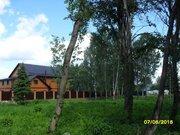 Прекрасный участок на окраине леса в д. Данилово - Фото 4