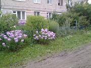 Продается 3к.кв. 1/2 эт. кирпичного дома в п.Балакирево. - Фото 1