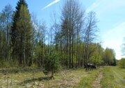 Лесной участок, с. Купань, (м. Шастово) - Фото 3