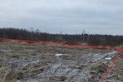 Земельный участок 20 соток в д.Волкуша - Фото 2