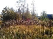 "Продается участок 12 соток в СНТ ""Лайнер"", 35 км. от МКАД. - Фото 5"