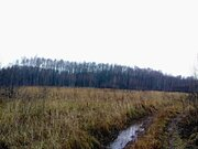 Продам: участок 620 соток, поселок Батюшково - Фото 3