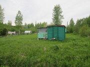 Продам земельный участок 10 сот. в СНТ Ива, массив Рябово - Фото 3