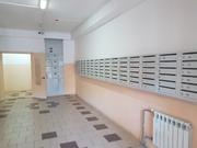 Продается квартира-студия с отделкой и мебелью, Купить квартиру в Пушкино по недорогой цене, ID объекта - 322006801 - Фото 13