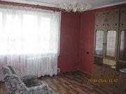 3 комнатная лесная 8 - Фото 4