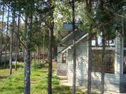Звенигород, Кобяково, дом у леса, сосны на уч-ке, тишина. - Фото 5