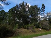 Продается участок в г. Палм Кост, Флорида США - Фото 5