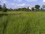 Земельный участок под строительство и лпх - Фото 2