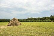 Продается земельный участок в Ступинском районе - Фото 5