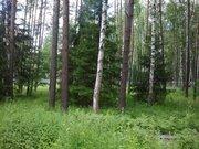 Лесной участок 13 соток в пос. Самар-1, Раменский район 40 км от МКАД - Фото 2