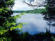 Дачный дом из бруса в живописном месте, лес, озеро - Фото 3