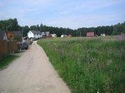 Участок, Московская область, ш. Горьковское, 60 км, дер.Васютино - Фото 5