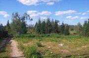 Земельный участок СНТ Звенигород - Фото 3