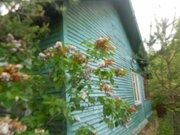 Дачный дом 55 кв.м с кирпичной печью на участке 10 соток - Фото 2