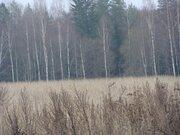 Земельный участок 15 соток ИЖС д. Васильково Клинский р-он рядом лес - Фото 4