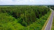 7 250 га в т.ч. 2750 га леса в собственности! - Фото 5