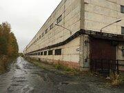 Продам производственный комплекс 11 934 кв.м.
