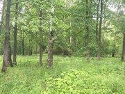 20 соток газ лес на реке - Фото 5