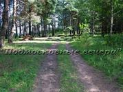 Новорижское ш. 190 км от МКАД, Борки, Участок 50 сот. - Фото 3