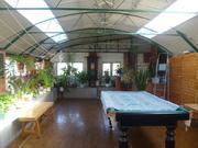 Продам дом в Белокурихе - Фото 5