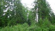 Земельный участок, Назарьево, Рублево-Успенск - Фото 1