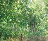 Лесной участок 12 соток в СНТ возле д. Ступино в 100 км. от Москвы. - Фото 3