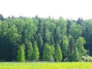 Продам участок 6 соток расположенный в новом дачном поселке - Фото 4