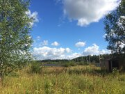 20 соток в деревне Бережки - почти бесплатно - Фото 5